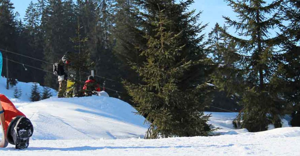 Tobogganing and sledging in the Tannheimer Tal