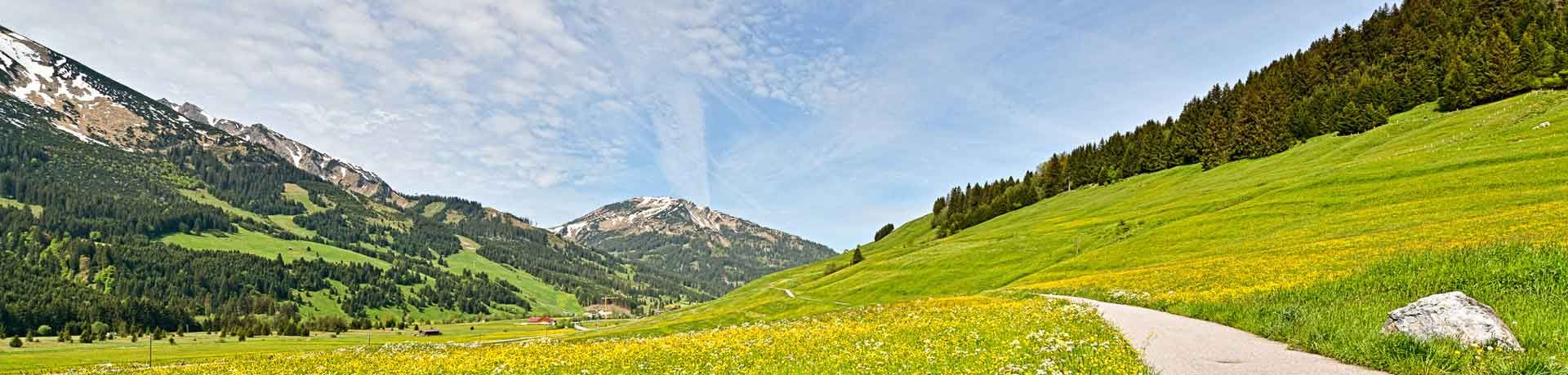 View of the springtime Tannheimer Tal, Tyrol